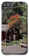 The Old Mill 1 IPhone Case by Ernie Echols