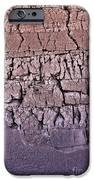 The Old Wall IPhone Case by Adam Smith