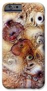 Unphased And Confused IPhone Case by Casey Kotas