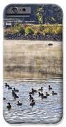 Water Fowl At Lake Wilhelmina Arkansas IPhone Case by Douglas Barnard