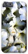 White Flowers At Dusk IPhone Case by Sumit Mehndiratta
