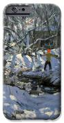 Winter Stream IPhone Case by Andrew Macara