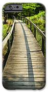 Wooden Walkway Through Forest IPhone Case by Elena Elisseeva