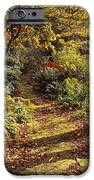 Woodland Path, Mount Stewart, Ards IPhone Case by The Irish Image Collection