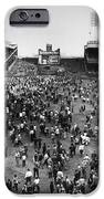 New York: Polo Grounds IPhone Case by Granger