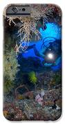 A Diver Peers Through A Coral Encrusted IPhone Case by Steve Jones