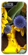 Allium And Sunflowers IPhone Case by Jane Rix