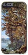 An Ancient Beech Tree IPhone Case by Paul Sandby