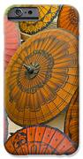 Asian Umbrellas IPhone Case by Michele Burgess