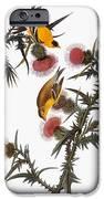 Audubon: Goldfinch IPhone Case by Granger