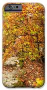 Autumn Falls IPhone Case by Evgeni Dinev