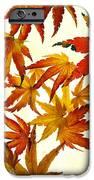 Autumn Flury IPhone Case by Rebecca Cozart