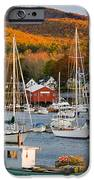 Autumn Gold IPhone Case by Susan Cole Kelly