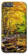 Autumn Landscape IPhone Case by Evgeni Dinev
