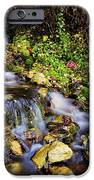 Autumn Stream IPhone Case by Chad Dutson