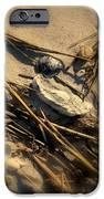 Beach Still Life IPhone Case by Susanne Van Hulst