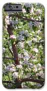 Beautiful Blossoms - Digital Art IPhone Case by Carol Groenen