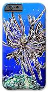 Beautiful Marine Plants 1 IPhone Case by Lanjee Chee