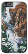Cavalier King Charles Spaniel With Butterfly IPhone 6s Case by Lee Ann Shepard