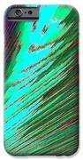 Cohesive Diversity IPhone Case by Will Borden
