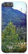 Colors Of Vail IPhone Case by Madeline Ellis