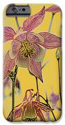 Columbine  IPhone Case by Michael Peychich