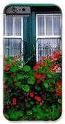 Cottage Window, Co Antrim, Ireland IPhone Case by The Irish Image Collection
