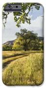 Country Road IPhone Case by Sharon Foster