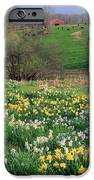Country Spring IPhone Case by Bill Wakeley