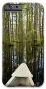 Cypress Garden Swamp IPhone Case by Dustin K Ryan
