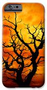 Dead Tree IPhone Case by Meirion Matthias