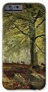 Deer In A Wood IPhone Case by Joseph Adam