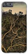 Dolwyddelan Castle IPhone Case by Meirion Matthias