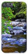Early Autumn Along Williams River IPhone Case by Thomas R Fletcher
