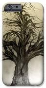 Enchanted IPhone Case by John Krakora