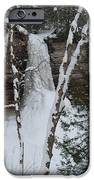 Frozen IPhone Case by Michael Peychich