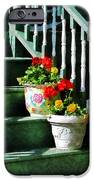 Geraniums And Pansies On Steps IPhone Case by Susan Savad