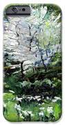 Germany Baden-baden Spring 2 IPhone Case by Yuriy  Shevchuk