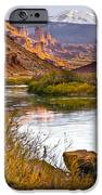 Golden Light IPhone Case by Marilyn Hunt