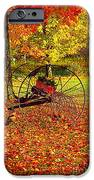 Gone With The Wind IPhone Case by Diane E Berry