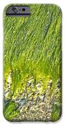 Green Algae On Rock IPhone Case by Kenneth Albin
