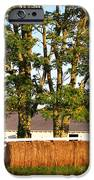 Hay Bales And Trees IPhone Case by Todd A Blanchard