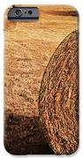 Hay In The Field IPhone Case by Tamyra Ayles