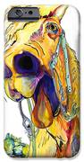 Horsing Around IPhone Case by Pat Saunders-White