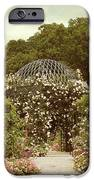 June Bloom IPhone Case by Jessica Jenney