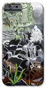 Keanae IPhone Case by Fay Biegun - Printscapes