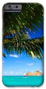 Lanikai, Palm Tree IPhone Case by Dana Edmunds - Printscapes