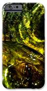 Limelight IPhone Case by Will Borden
