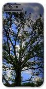 Lonely Tree IPhone Case by Kevin Hill