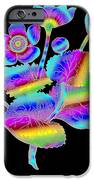 Marsh Marigold IPhone Case by Eric Edelman